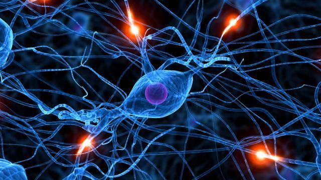 Effects Of Medical Marijuana On Seizures