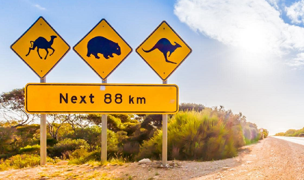 Road Trip Australia: Three Key Routes